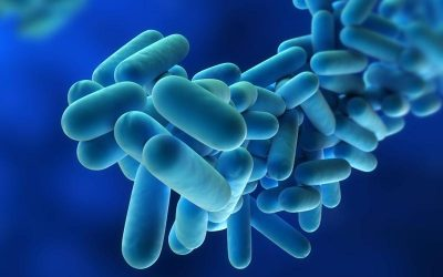 Four Steps to Controlling Legionella Growth in Cooling Towers