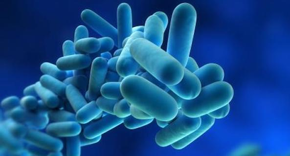 Legionella is a major problem in mechanical systems, making water filtration critical